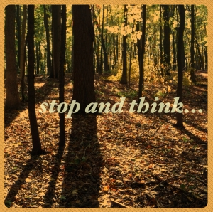 Stop-and-Think1
